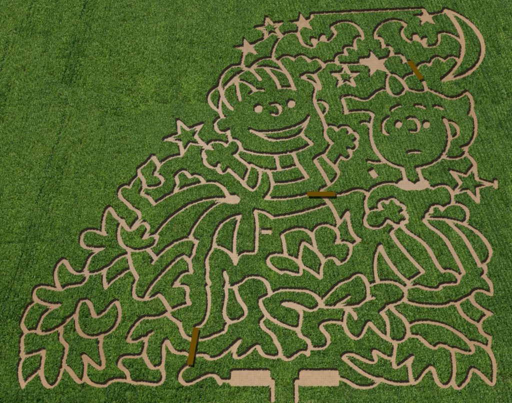 linus-and-sally-maze